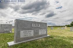 John David Crow - Gray - Double Upright