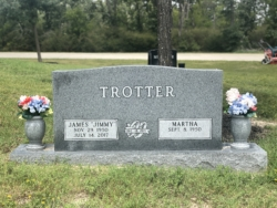 Trotter - Gray - Double Upright